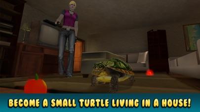 Turtle Simulator: House Pet Life