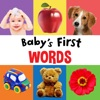 My Baby's First 100 Words & Flashcards