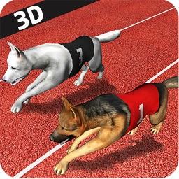 Dog Racing  3D