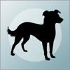 What's My Mutt? - Indy Dog LLC
