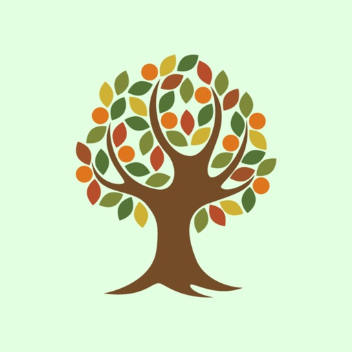 Tree of Life Church