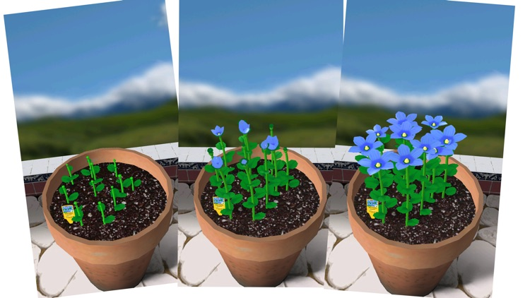 Flower Garden Free - Grow Flowers Send Bouquets screenshot-0