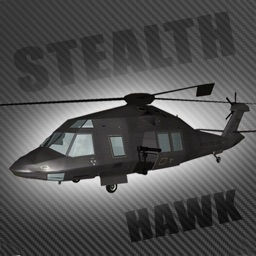 Stealth Hawk Flight Simulator