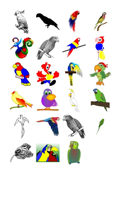 Parrots Sticker Pack