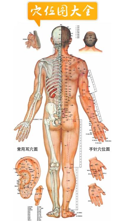 人体穴位图解专业版-家庭自我保健中医经络与养生疗法