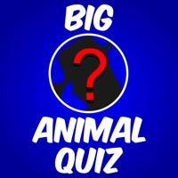 Codes for Big Zoo Animals Quiz Maestro Hack