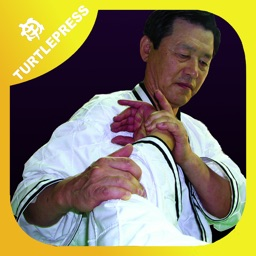 Hapkido Essentials and Self-defense Skills