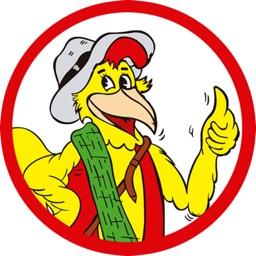 Pollos Mario Hempstead