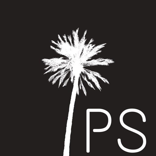 Palm Springs Properties