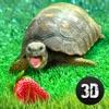 龟模拟器:房子生活