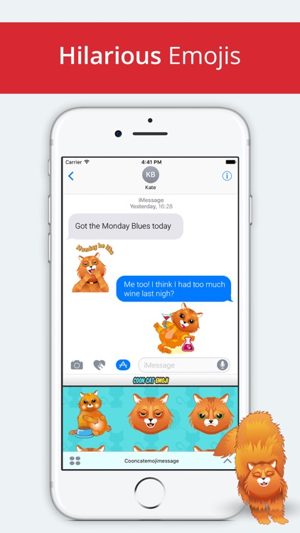 Coon Cat Emoji -Maine Coon Stickers for Cat Lovers screenshot-3