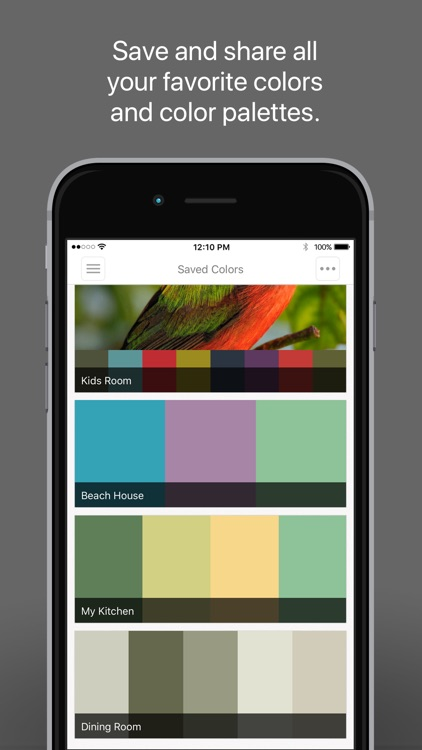 ColorSnap® Visualizer for iPhone screenshot-4
