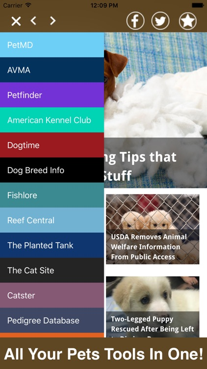 Pets All In One- Advice, Reviews, Shopping & More!