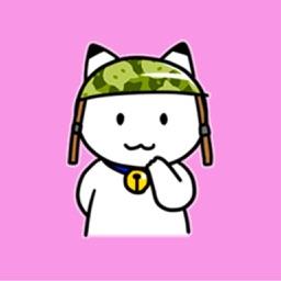 Military Cat!