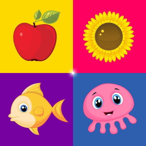 Sorter - Toddler & Baby Educational Learning Games icon