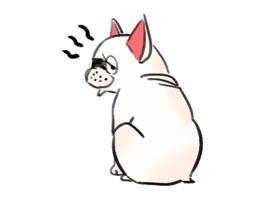 FrenchieMoji - French Bull Dog Emojis Stickers