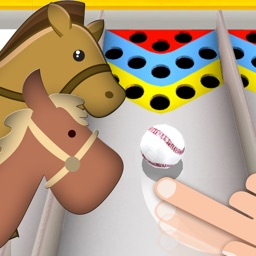 Carnival Horse Racing Game