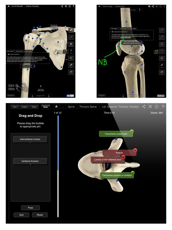 Skeleton System Pro IIIのおすすめ画像3