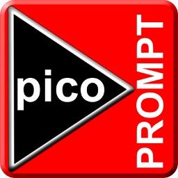 picoPrompt