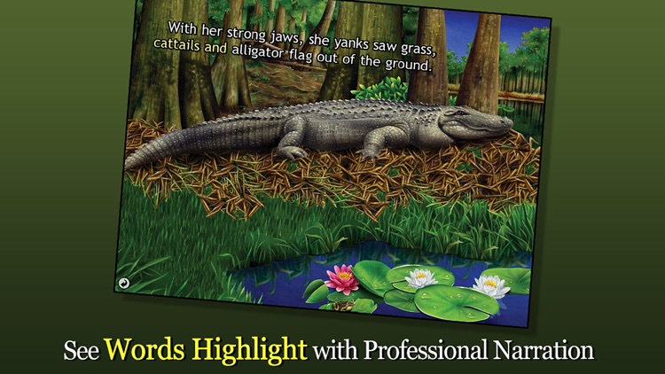 Alligator at Saw Grass Road - Smithsonian's screenshot-1