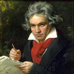 BeethovenQuartets3