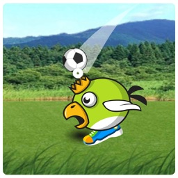 Animal Head Soccer