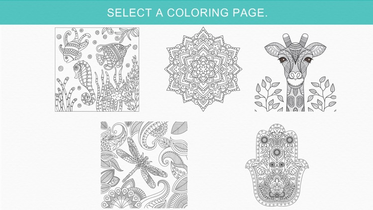 Zen: coloring book for adults (Premium)