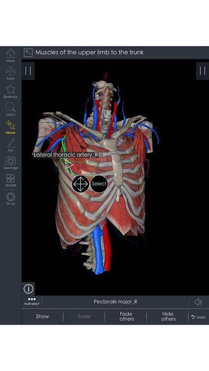 Medsee - 3D Detailed Anatomy screenshot-4