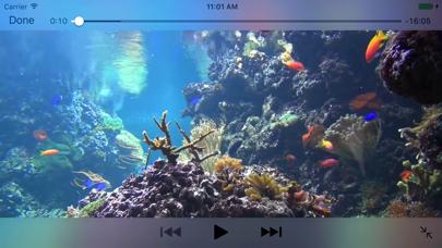 Reef Aquarium 2D/3D freeのおすすめ画像1