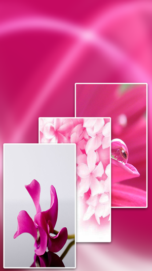 ‎Full HD Pink Wallpapers Screenshot