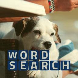 Wordsearch Revealer Pets