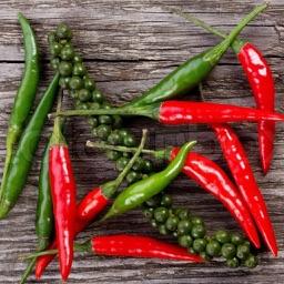The Chili Recipes