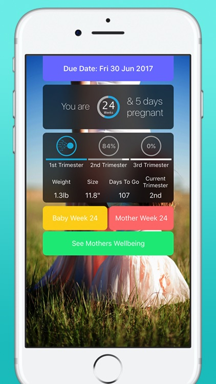 Pregnancy Today - Baby Tracker screenshot-0