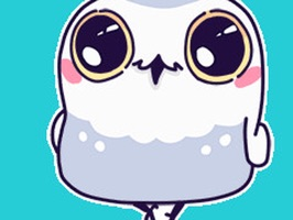 Animated White Owl Stickers For iMessage