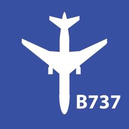 Boeing 737 NG Bleed Air Diagram
