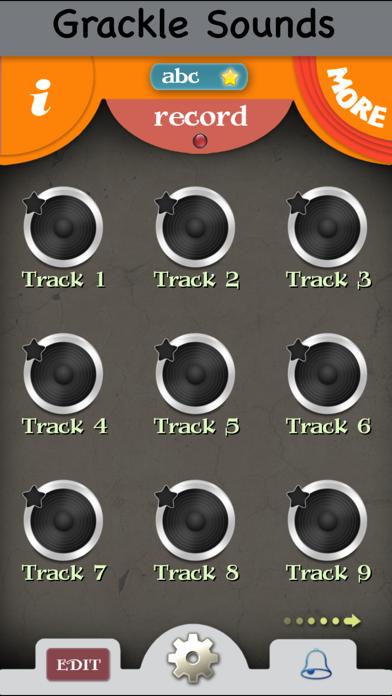 Grackle Bird Calls - High Quality Sound Effects