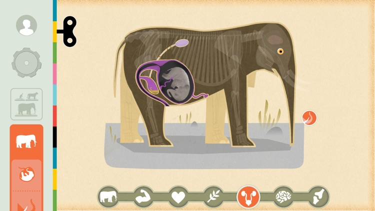 Mammals by Tinybop screenshot-1