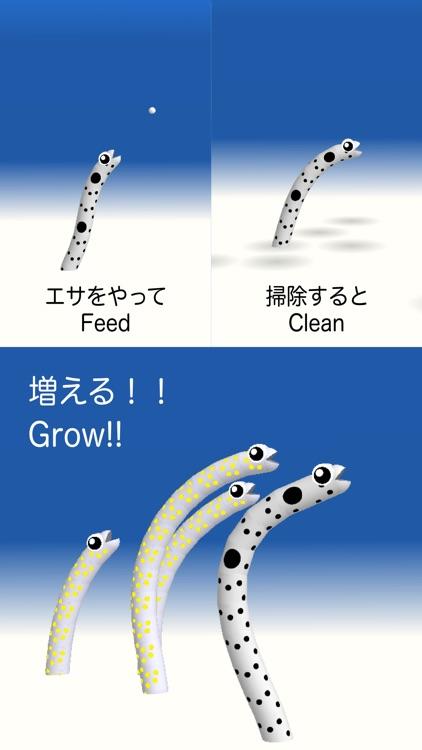 Garden Eel