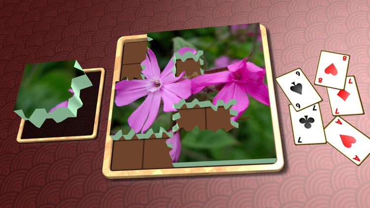 Jigsaw Solitaire Plants screenshot-4
