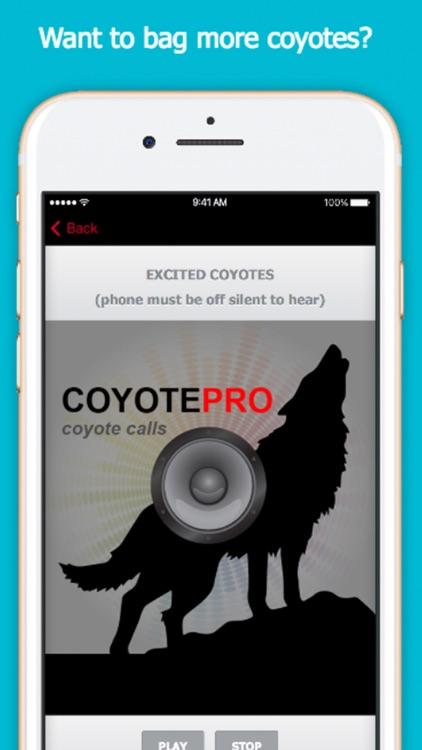 Coyote Calls For Predator Hunting screenshot-0