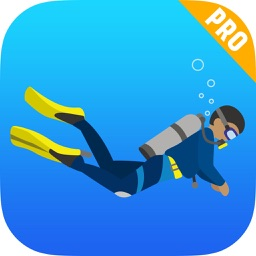 Apnoea Diving Coach for Scuba, Deep Sea & Apnea
