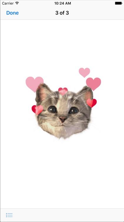 Little Kitten Stickers screenshot-3