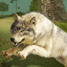Activities of Life Of Wolf Simulator : Hunt Feed and Grow wolves