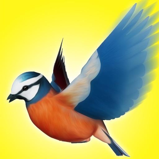 Climb Bird Climb - A Bird Jumper Game