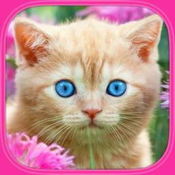 Kočky a kočičky : Vzdělávací puzzle hry pro děti