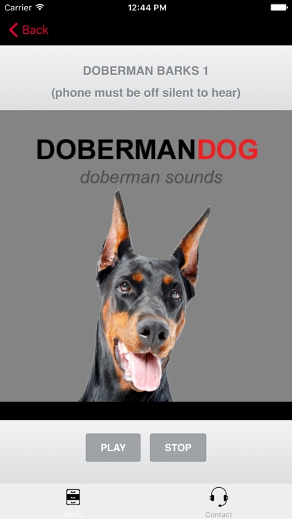 Doberman Dog Sounds and Barking