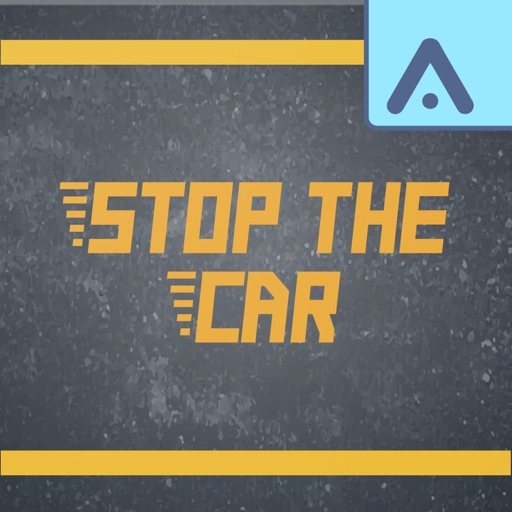 Stop the Car - Driving Game
