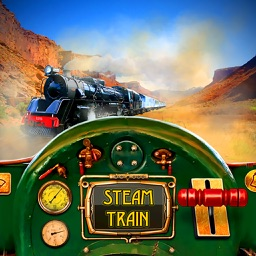 Steam Train Driving