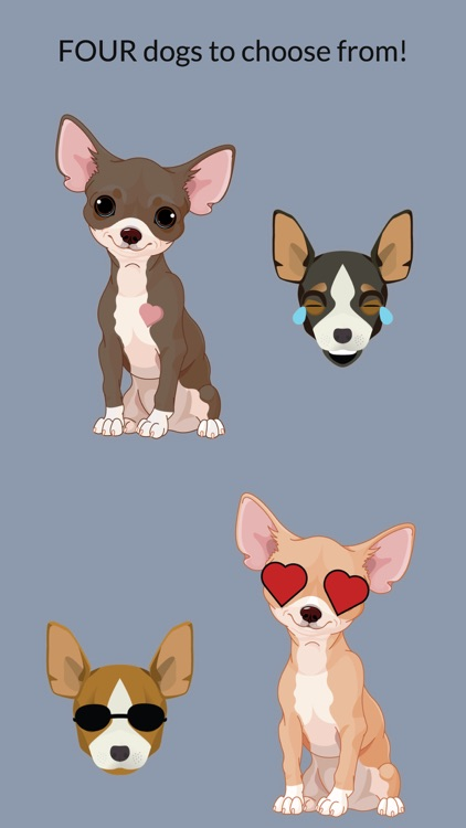 Chihuahuamoji - Chihuahua Emoji & Stickers screenshot-1
