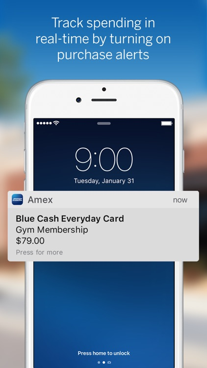 Amex Mobile screenshot-1